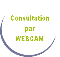 Consultation par webcam